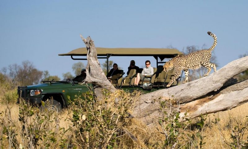 Zarafa Camp - Botswana