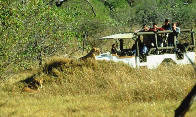 Camp Moremi Botswana