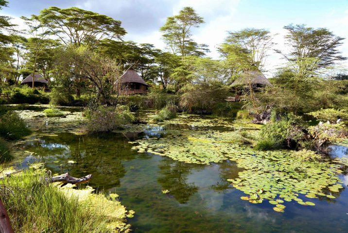 Finch Hattons Luxury Camp