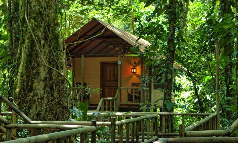 Evergreen Lodge Tortuguero