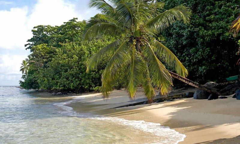 Taveuni Palms Resort Fiji