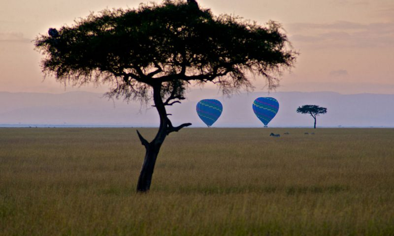 Mara Explorer Tented Camp Kenya