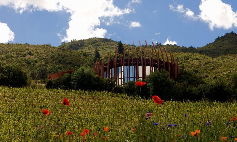 Clos Apalta Residence - Chile