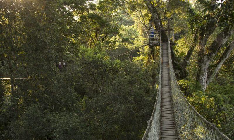 Inkaterra Reserva Amazonica - Peru